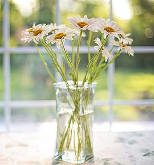 花艺创业为什么要进行专业花艺培训